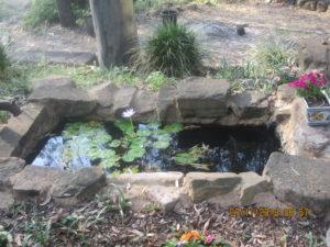 Post 10: Ponds in the Garden as Special Garden Rooms | Ken